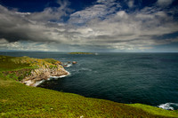 Great Saltee Island green landscape with Little saltee Island in view