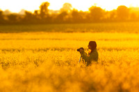 Photographer working in a field of yellow rape seed